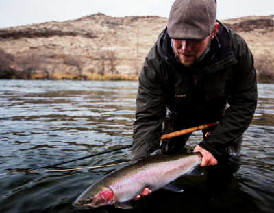 Guided Fly Fishing Trips on The Deschutes River | The Portland Fly Shop